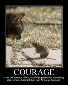 Courage is not the absense of fear