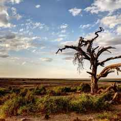 Photo by Oleg Magni on Pexels.com