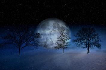 winter-2957050_1920