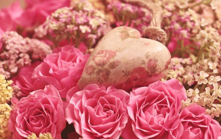 roses-3699995_1920