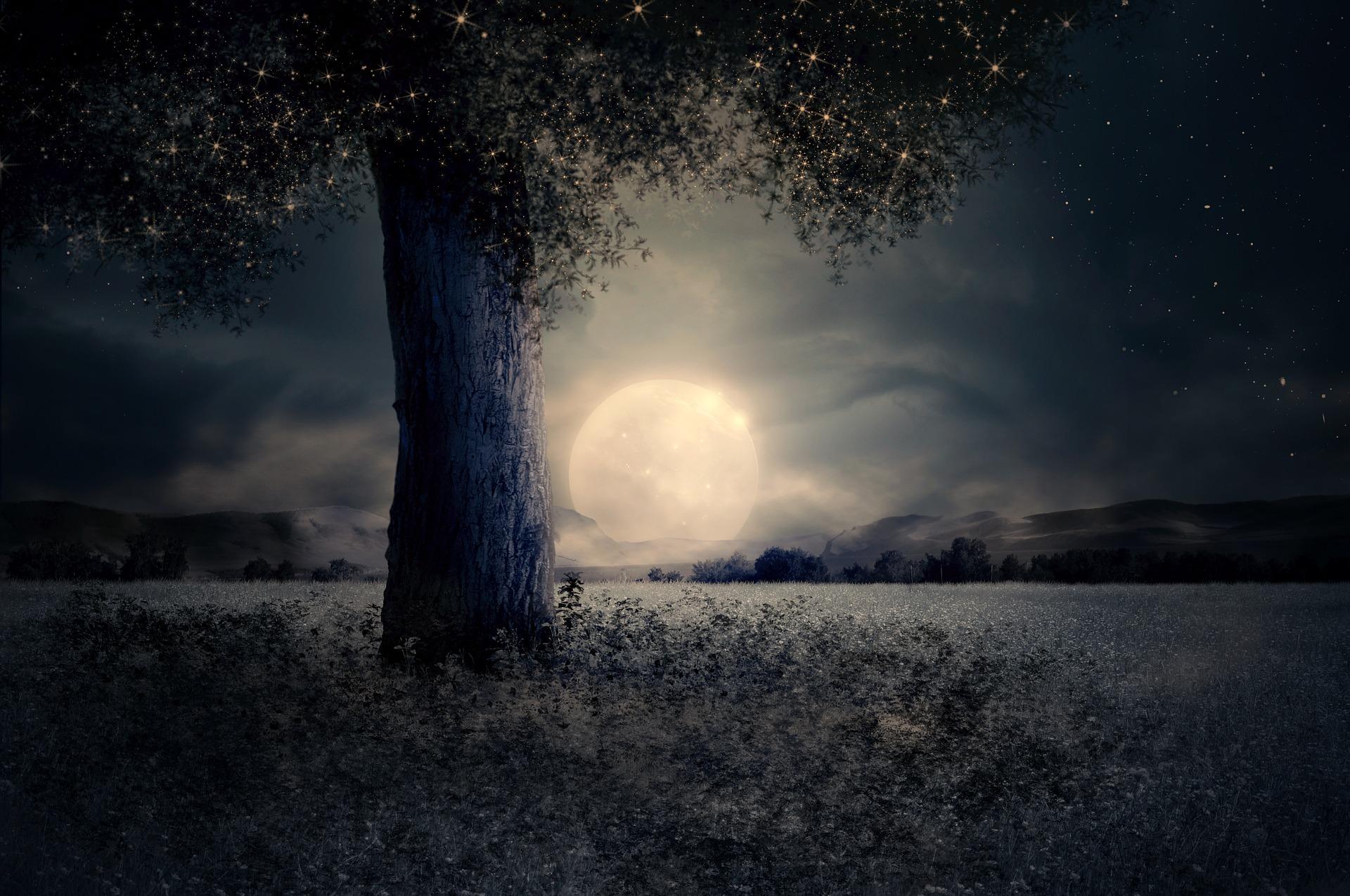 night-2539411_1920